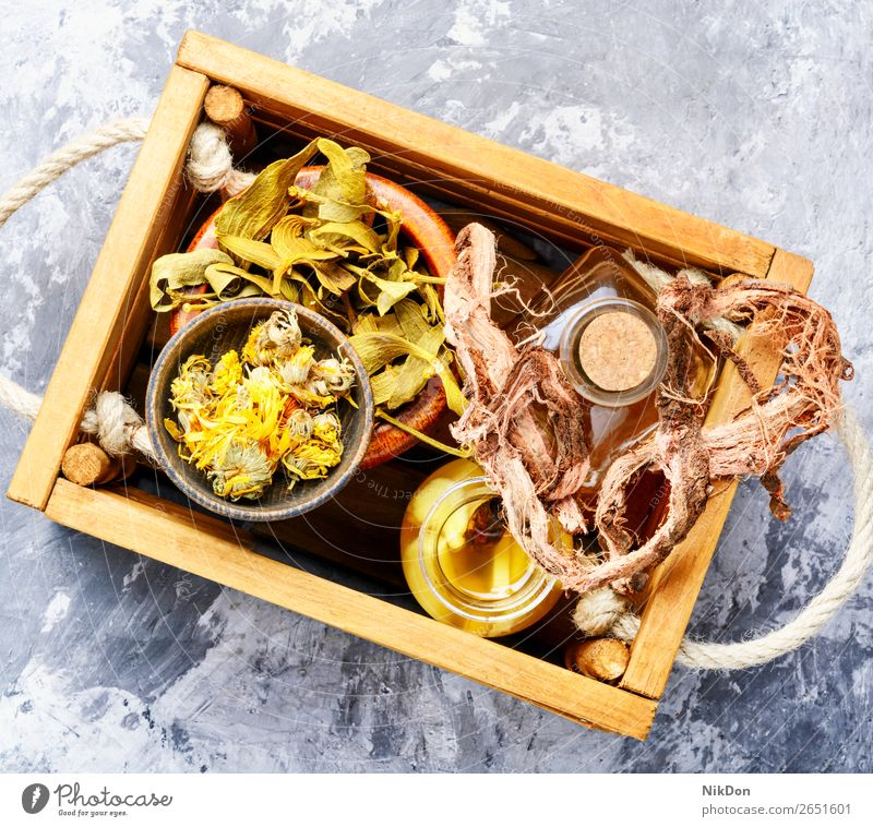 Heilkräuter in Holzkiste Kräuterkunde Kräuterbuch Kräuterkundige natürlich organisch Medizin Blatt Natur Gesundheit Pflanze Wurzel Blume Tee medizinisch Glas