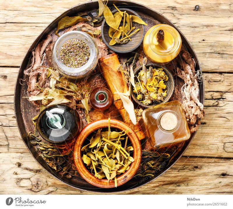 Alternative pflanzliche Medizin Kräuterkunde Kräuterbuch Kräuterkundige natürlich organisch Blatt Natur Gesundheit Wurzel Pflanze alternativ Blume Tee