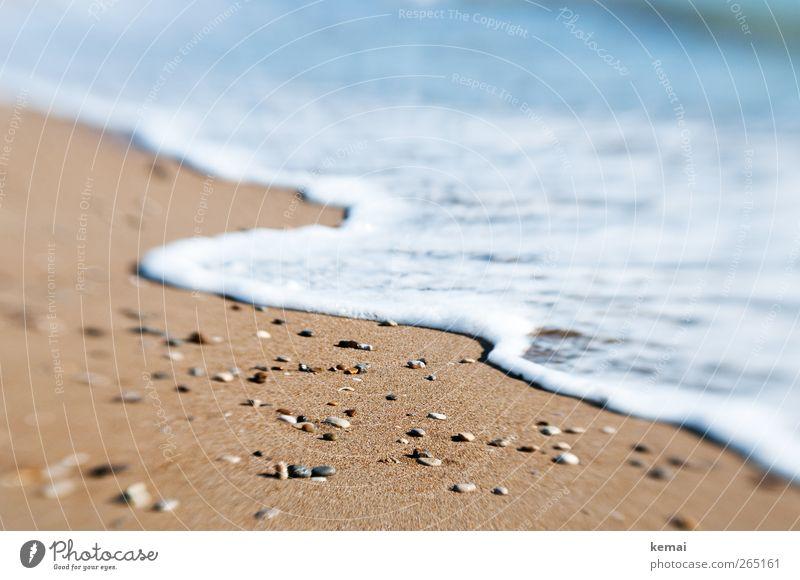 Meers(ch)aum Natur Wasser Ferien & Urlaub & Reisen Sonne Meer Sommer Strand Erholung Umwelt Stein nass Tourismus Urelemente Wellness Schönes Wetter Sommerurlaub