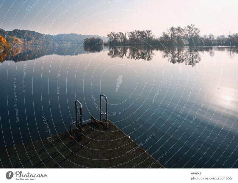 Donau, bei Kelheim (BY) Natur Pflanze Wasser Landschaft Sonne Baum ruhig Wald Ferne Herbst Umwelt Horizont Metall Idylle Sträucher Schönes Wetter