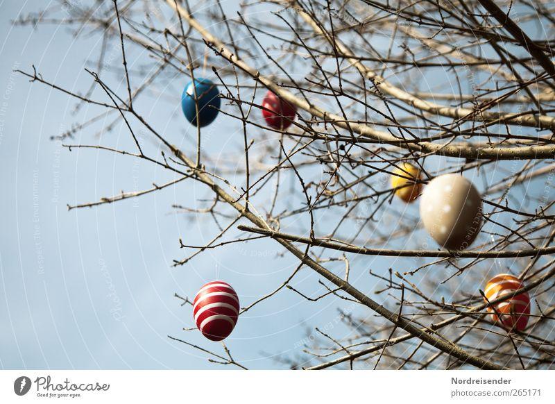 Die Woche hat vier Tage Freude Feste & Feiern Ostern Himmel Frühling Schönes Wetter Sträucher Zeichen Ornament Linie Streifen hängen mehrfarbig Vorfreude