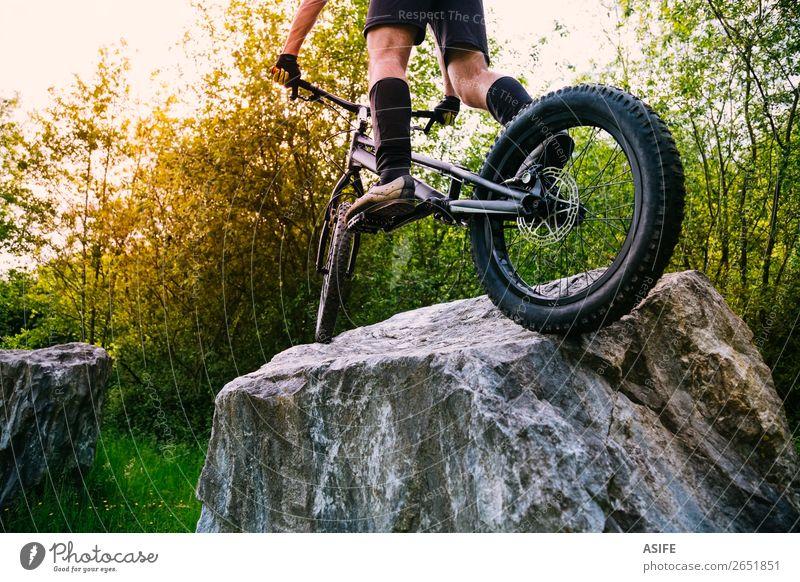 Extremer Radsport Sportkonzept Freiheit Sommer Berge u. Gebirge Fahrradfahren Mann Erwachsene Natur Baum Wald Felsen springen frei stark Reiter extrem jung
