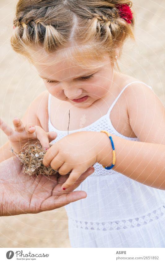 Neue Erfahrungen für kleine Mädchen Leben Sommer Kind Schule Kleinkind Eltern Erwachsene Vater Hand Natur blond Vogel Liebe Neugier niedlich Nest Tochter