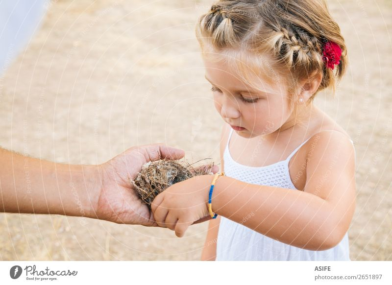 Kleines Mädchen entdeckt die Natur Leben Sommer Kind Schule Kleinkind Eltern Erwachsene Vater Hand blond Vogel Liebe klein Neugier niedlich Nest Tochter