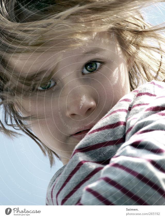 eyes of the lil tiger Mensch Kind Mädchen Kopf Haare & Frisuren Gesicht Auge Nase 1 Pullover blond langhaarig Blick träumen ästhetisch authentisch glänzend