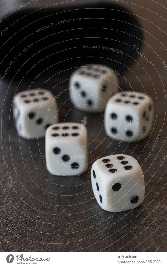 Würfelpoker Kunststoff Ziffern & Zahlen Bewegung Spielen Glück schwarz weiß Geld Glücksspiel Poker würfelpoker 6 Spielkasino würfeln spielerisch Glücksspieler