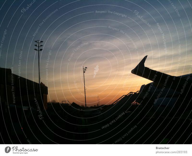 Adieu TXL Flughafen Flugzeug Flugzeuglandung Flugzeugstart Fernweh Sonnenuntergang Berlin Flughafen Berlin-Tegel kommen Heimat Landen einchecken Tragfläche