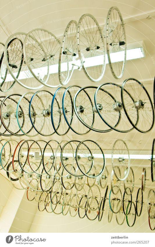 Fahrradladen Ferien & Urlaub & Reisen Lampe Freizeit & Hobby Ausflug Tourismus neu viele hängen Fahrradfahren Auswahl Angebot Schaufenster Speichen Zimmerdecke Fahrradtour Felge