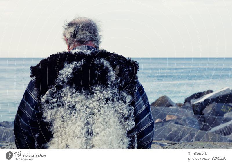 Onkel Wolfgang maskulin Mann Erwachsene Männlicher Senior Rücken 45-60 Jahre 60 und älter Meer Denken Felsen Küste Meerwasser Wolle Weste nachdenklich Wolljacke