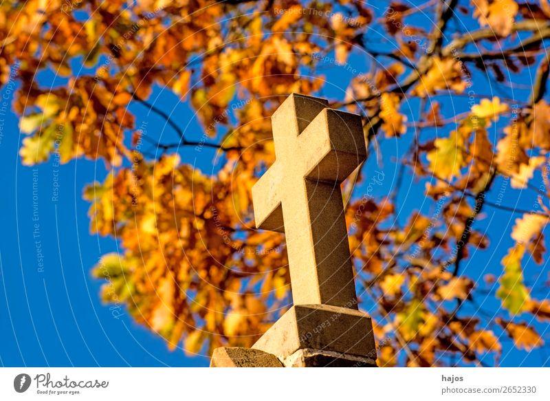 Kreuz mit herbstlich verfärbtem Laub im Hintergrund Zeichen gelb Religion & Glaube christian katholisch Symbol Pilgerweg Pilgerstrasse Kreuzweg Herbst Baum