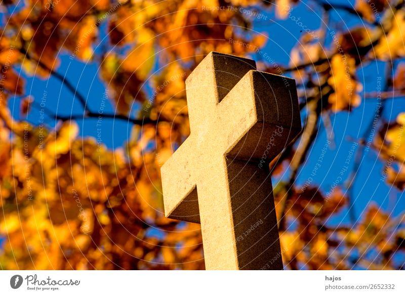 Kreuz mit herbstlich verfärbtem Laub im Hintergrund gelb trösten dankbar Schmerz schuldig Religion & Glaube christian Kreuzweg katholisch Pilgerweg Kreuzstation