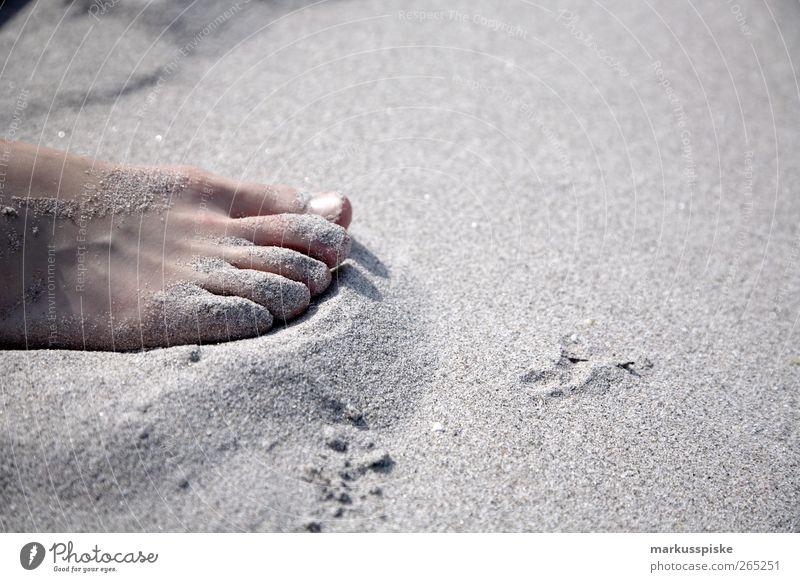 barfuss Natur Ferien & Urlaub & Reisen Sommer Strand Freiheit Küste Körper Ausflug Abenteuer Tourismus Europa Italien Seeufer Bucht genießen Mittelmeer
