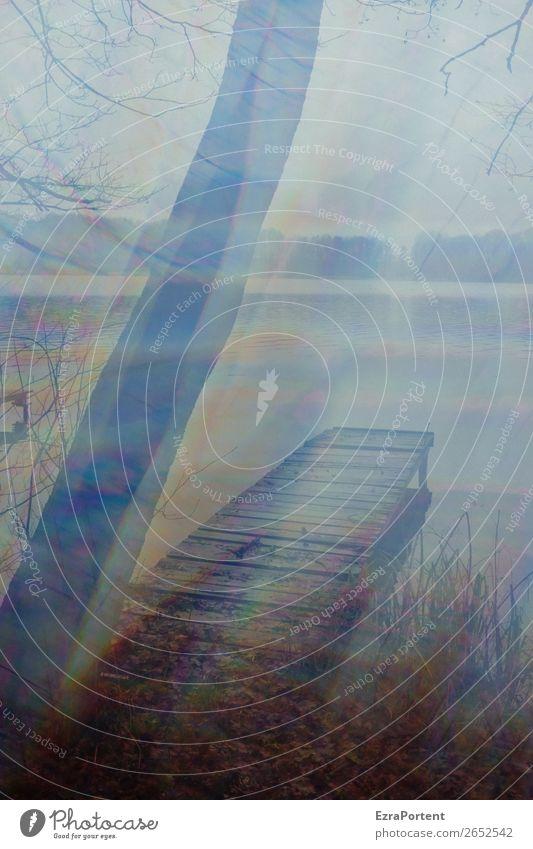 Steg ohne Bank Umwelt Natur Landschaft Luft Wasser Himmel Herbst Winter Baum See kalt ruhig Einsamkeit Irritation Ast Ferne Seeufer Farbfoto Außenaufnahme