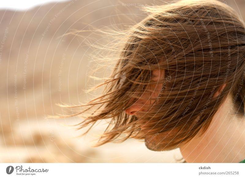 Das lange Haar des Mannes weht im Wind. maskulin Erwachsene Jugendliche Kopf Haare & Frisuren 1 Mensch 18-30 Jahre brünett Bart Dreitagebart frei braun gelb