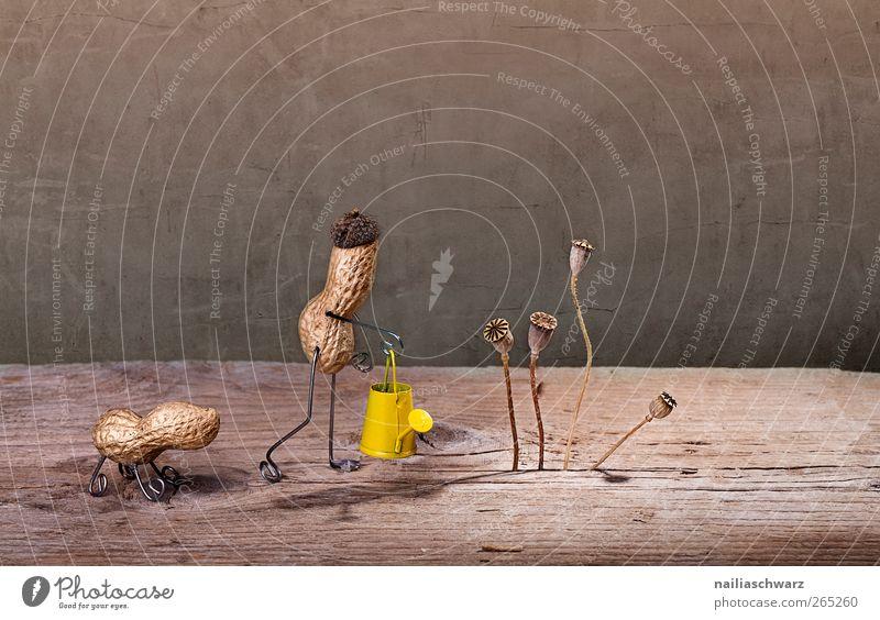 Simple Things, Gartenarbeit Mensch Hund Pflanze Blume Tier gelb Senior Kunst Stimmung braun Zusammensein Arbeit & Erwerbstätigkeit Zufriedenheit laufen niedlich