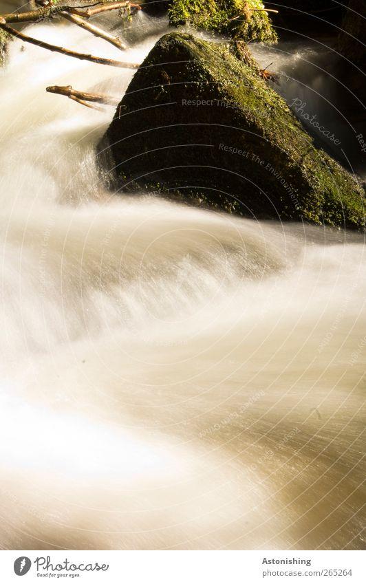 Wildwasser Umwelt Natur Landschaft Pflanze Wasser Frühling Moos Felsen Wellen Flussufer Bach Wasserfall Stein Holz grün weiß Geschwindigkeit Dynamik
