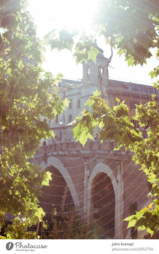 Rom XII - John of God Ferien & Urlaub & Reisen schön Baum Gesundheit Wand Gesundheitswesen Tourismus Mauer Fassade leuchten Brücke Italien historisch