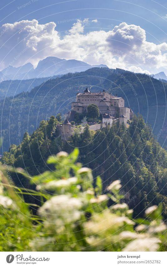 II Burg Hohenwerfen - Das Turnier Burg oder Schloss Mittelalter Ritter historisch Turm Himmel Wolken Festung Salzburger Land Wald Außenaufnahme Sehenswürdigkeit