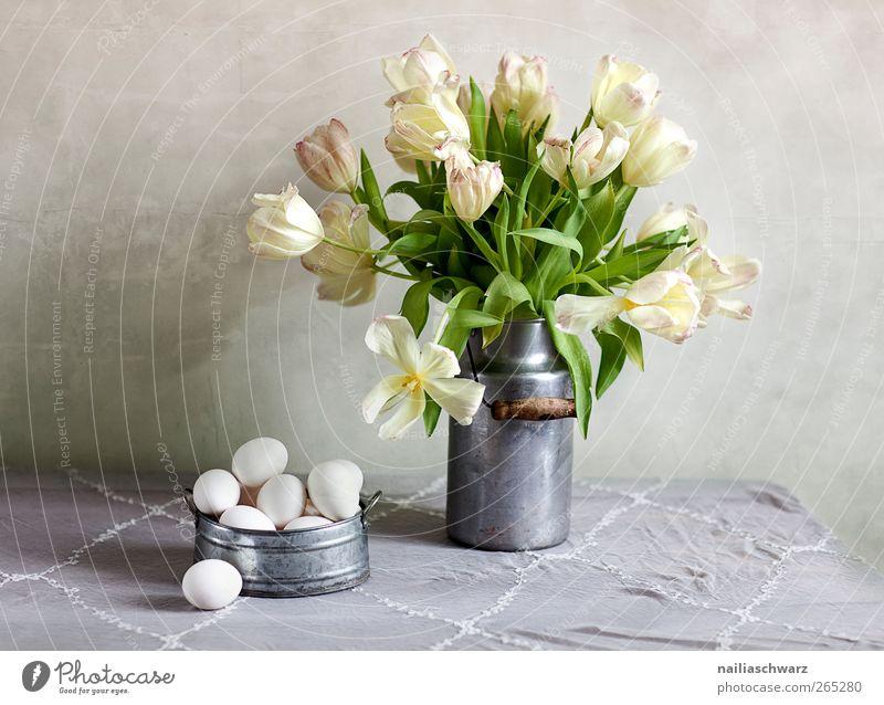 Stilleben mit Tulpen Lebensmittel Ei Hühnerei Ernährung Pflanze Blüte Blumenstrauß Milchkanne Schalen & Schüsseln Holz Metall Blühend Duft liegen ästhetisch