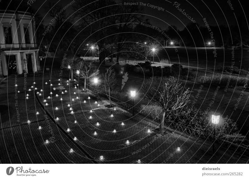Angriff der Windlichter Ferien & Urlaub & Reisen schwarz Wiese dunkel Garten Feste & Feiern Park Zufriedenheit leuchten Dekoration & Verzierung retro Kerze