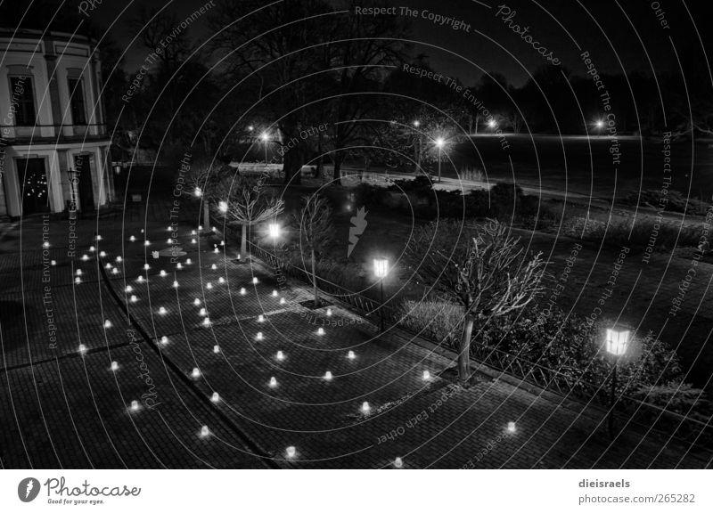 Angriff der Windlichter Ferien & Urlaub & Reisen schwarz Wiese dunkel Garten Feste & Feiern Park Zufriedenheit leuchten Dekoration & Verzierung retro Kerze Laterne Sightseeing Nachthimmel HDR