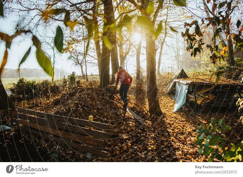 Mann fährt eine Schubkarre voll Laub auf den Kompost im Herbst Lifestyle Gartenarbeit Herbstlaub herbstlich Herbstlandschaft Häusliches Leben Mensch Erwachsene