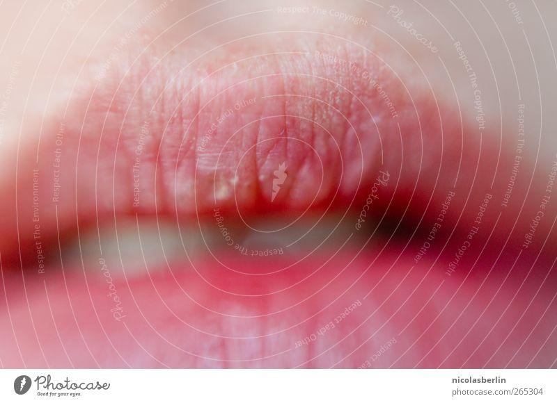 Broken Lips Haut Kosmetik Schminke Lippenstift feminin Junge Frau Jugendliche Zähne genießen Küssen Lächeln Liebe Erotik frech frei nah rosa Gefühle