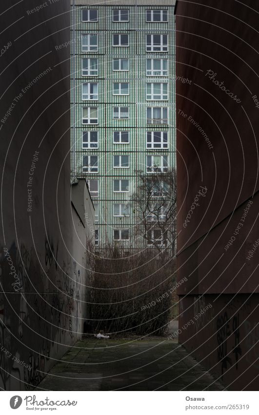 Nischendasein Berlin Lichtenberg Stadt Hauptstadt Menschenleer Haus Hochhaus Bauwerk Gebäude Architektur Plattenbau Wohnhochhaus Mauer Wand Fassade Fenster