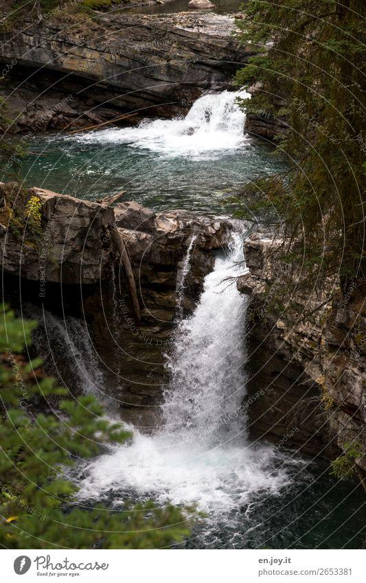 stufenweise Ferien & Urlaub & Reisen Natur Wasser Landschaft Umwelt Felsen Klima Urelemente Umweltschutz nachhaltig Wasserfall Kanada Nordamerika