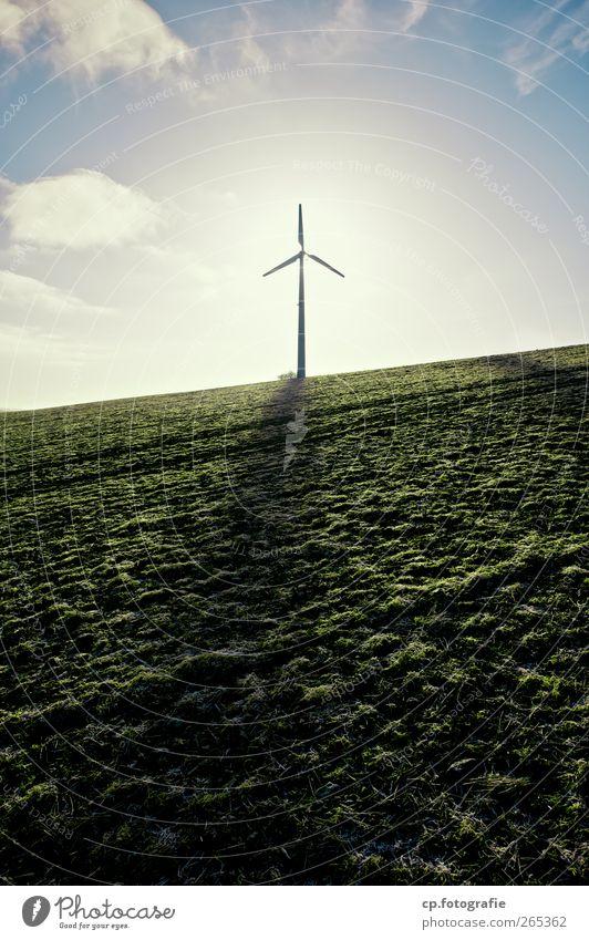 Hoffnung Technik & Technologie Fortschritt Zukunft Energiewirtschaft Erneuerbare Energie Windkraftanlage Landschaft Sonnenlicht Frühling Schönes Wetter Gras