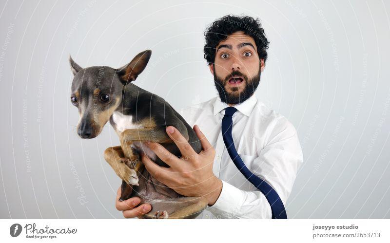 Mann mit einem kleinen Hund in der Hand. Aktion reizvoll Erwachsene Tier Hintergrund neutral Transparente Biest schön Dose heiter niedlich heimisch Energie