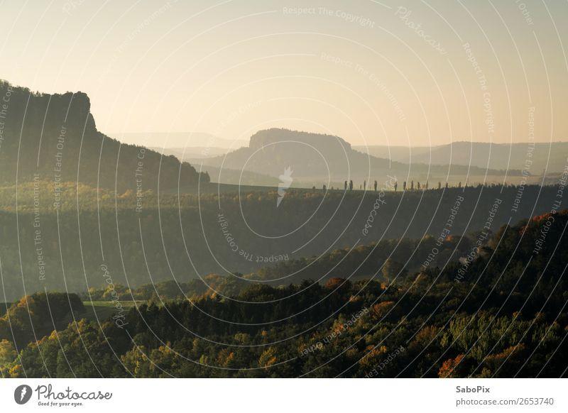 Morgendunst Umwelt Natur Landschaft Himmel Wolkenloser Himmel Sonnenaufgang Sonnenuntergang Sonnenlicht Herbst Schönes Wetter Wald Hügel Berge u. Gebirge dunkel