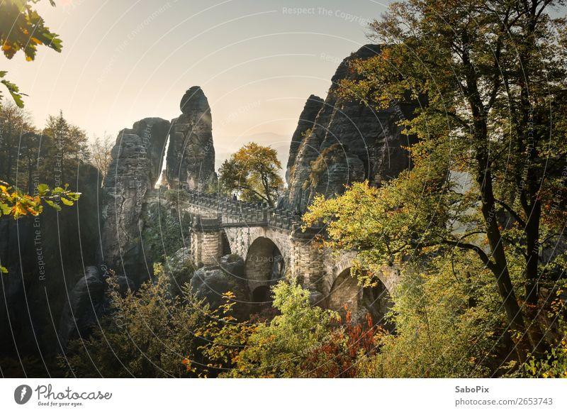 Basteibrücke Umwelt Natur Landschaft Himmel Wolkenloser Himmel Herbst Schönes Wetter Baum Felsen Gipfel Menschenleer Brücke Sehenswürdigkeit Wahrzeichen alt