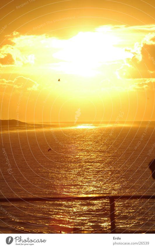 Englische Sonne Sonnenuntergang Meer Wasserfahrzeug orange Himmel