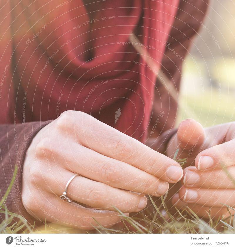 I. Hand Ring zart weich Sommer Sonnenstrahlen Nagel Fingernagel Tuch Schal rot Wiese Gras berühren Gefühle
