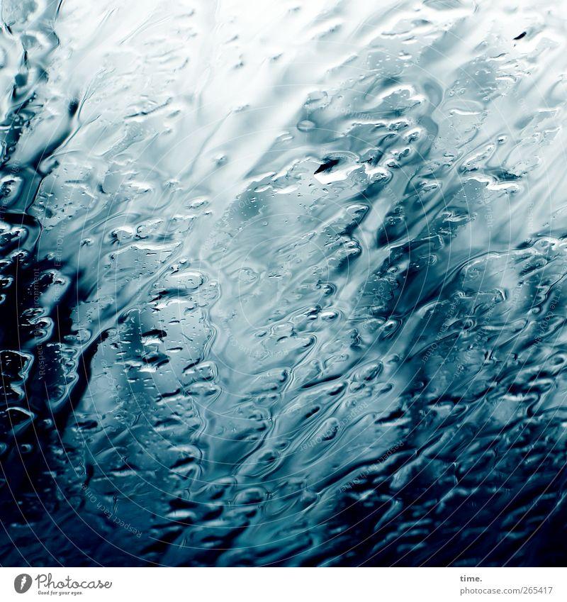 Eine Geschichte vom Regen | Lebenslinien #42 Natur blau Wasser weiß Umwelt dunkel Glas wild nass frisch Abenteuer Wassertropfen ästhetisch Wunsch