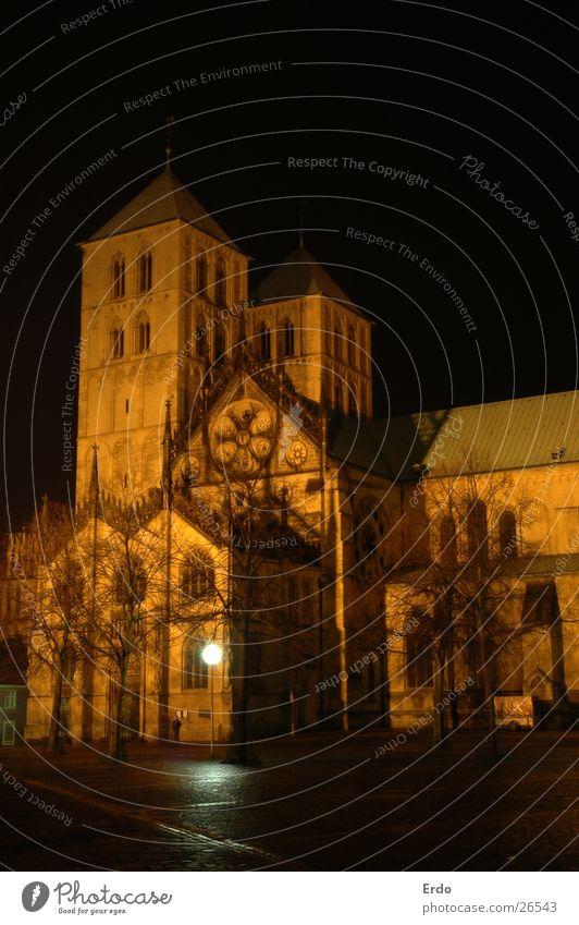 Dom zu Münster Dach Baum dunkel Nacht Nachtaufnahme Laterne Architektur Domplatz Turm Religion & Glaube
