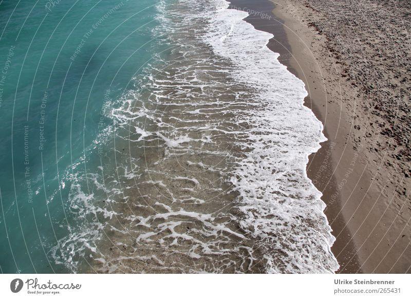 Meeressaum Natur blau Wasser grün Ferien & Urlaub & Reisen Strand ruhig Erholung Landschaft Bewegung Küste Sand braun Wellen Zufriedenheit