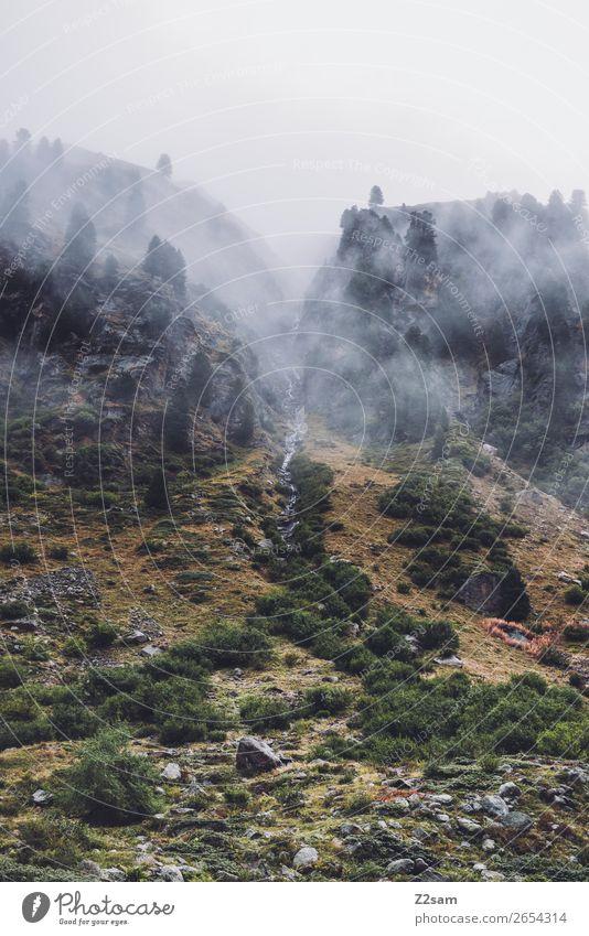 Gebirgsbach bei Mittelwerg | Pitztal | E5 Abenteuer wandern Natur Landschaft Wolken Herbst schlechtes Wetter Nebel Wald Alpen Berge u. Gebirge Gletscher Bach
