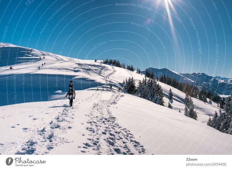 Tourengeher | Freerider Ferien & Urlaub & Reisen Natur Landschaft Sonne Winter Berge u. Gebirge Lifestyle kalt natürlich Wege & Pfade Schnee Sport Stil Ausflug