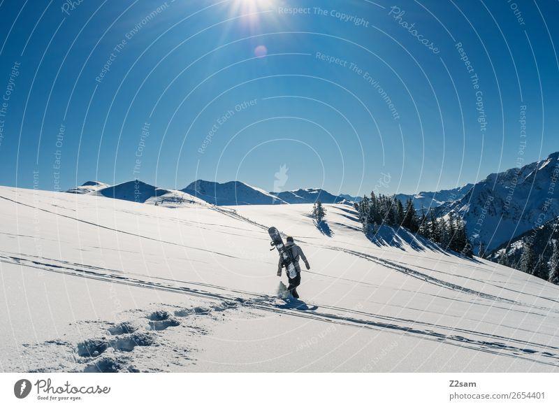 Tourengeher | Freerider Winter Berge u. Gebirge wandern Wintersport Snowboard maskulin Natur Landschaft Sonne Schönes Wetter Schnee Alpen gehen Sport Coolness