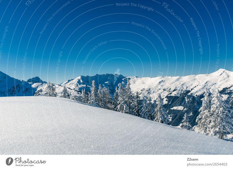 Winterwonderland Natur Landschaft Schönes Wetter Schnee Wald Alpen Berge u. Gebirge Gipfel ästhetisch einfach hoch kalt nachhaltig natürlich blau Einsamkeit