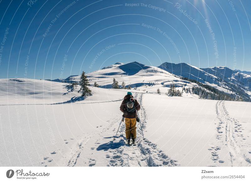 Tourengeher | Freerider Ausflug Berge u. Gebirge wandern Wintersport Skifahren Natur Landschaft Wolkenloser Himmel Schönes Wetter Schnee Alpen gehen hoch kalt