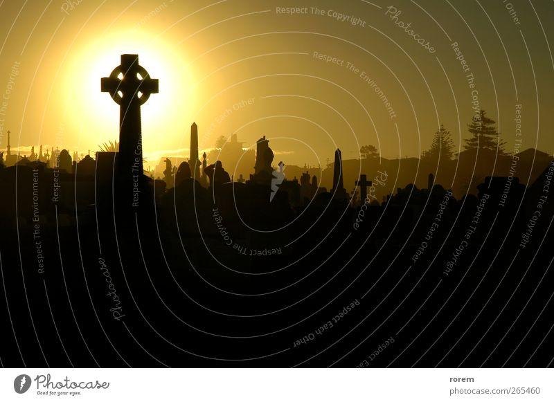 Friedhof Sonnenuntergang Halloween Trauerfeier Beerdigung Leben Sydney Denkmal Traurigkeit dunkel braun schwarz Tod Grab Krähe Bestattung vergraben traurig