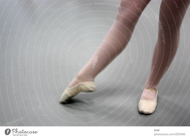 Ballettbeine die 2. Jugendliche feminin Beine Fuß Kraft Tanzen elegant ästhetisch stehen Junge Frau Spitze dünn sportlich Strumpfhose Balletttänzer Tänzer