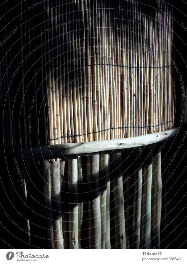 Ende? Namibia Licht Haus Wand dunkel Afrika Dekoration & Verzierung Natur Bambusrohr Schatten Kontrast hell Leben Tod