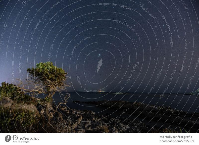 Blick aufs Meer bei Nacht Umwelt Natur Landschaft Wasser Wolkenloser Himmel Nachthimmel Stern Sommer Schönes Wetter Baum Grünpflanze Mittelmeer Insel Kos