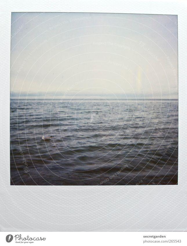 mittel-meer. Wasser Wolkenloser Himmel Winter Nordsee Ostsee Meer blau grau weiß Mitte zentral Wellen Wellenschlag Wellengang Horizont horizontal ruhig Frieden