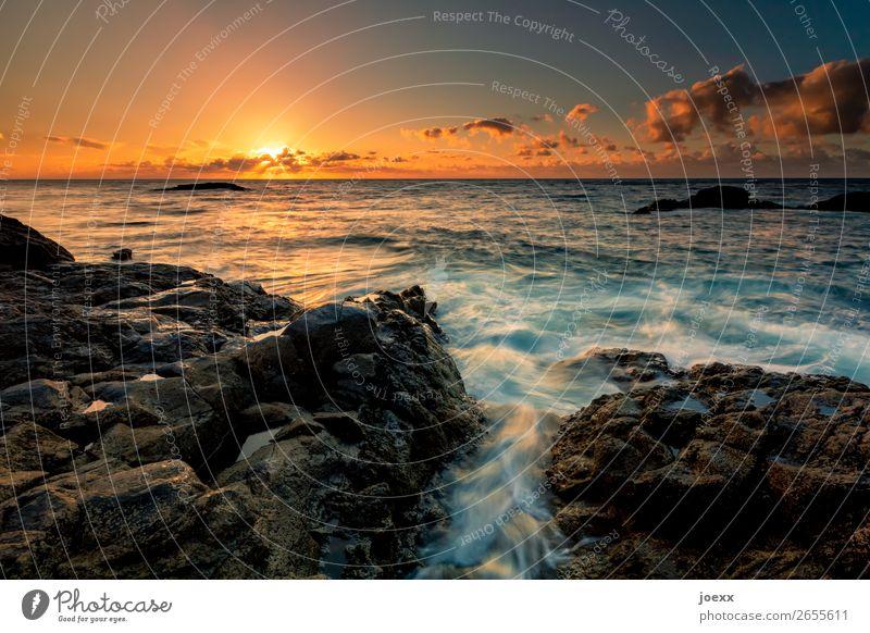 Jetzt endlich Sonne Meer Natur Wasser Himmel Wolken Horizont Sonnenaufgang Sonnenuntergang Sonnenlicht Sommer Schönes Wetter Felsen Wellen Küste Unendlichkeit
