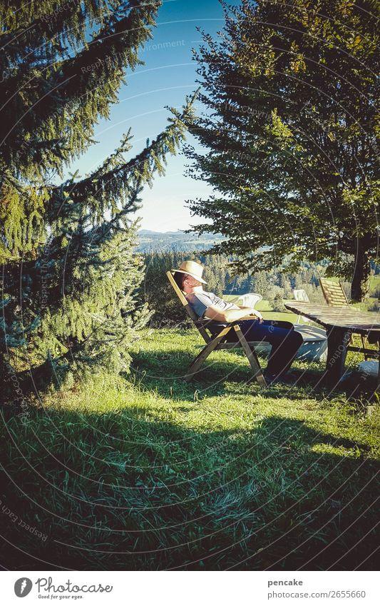 oh tannenbaum! 1 Mensch Natur Landschaft Himmel Schönes Wetter Garten Wiese Wald Alpen Hut genießen liegen schlafen Erholung Liegestuhl ausruhend Tanne